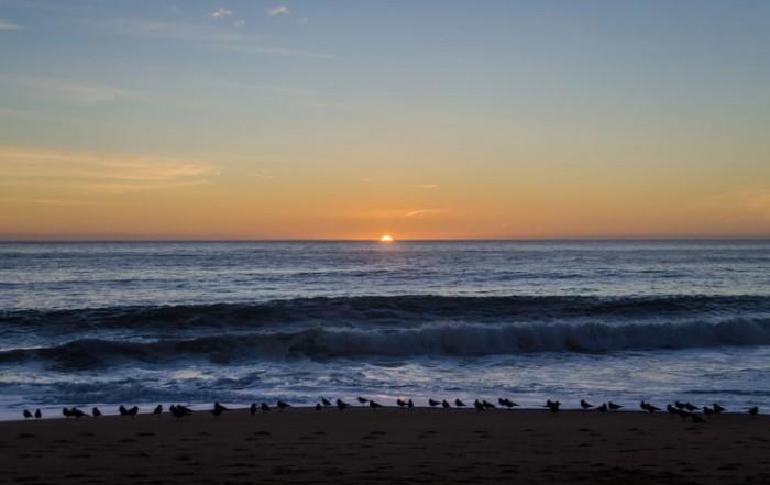 playa algarrobo