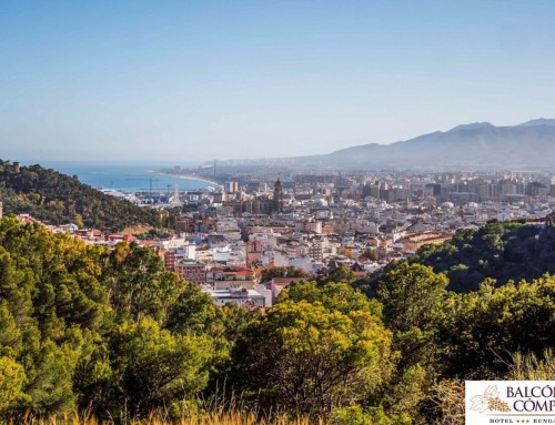Un día en Málaga desde Cómpeta